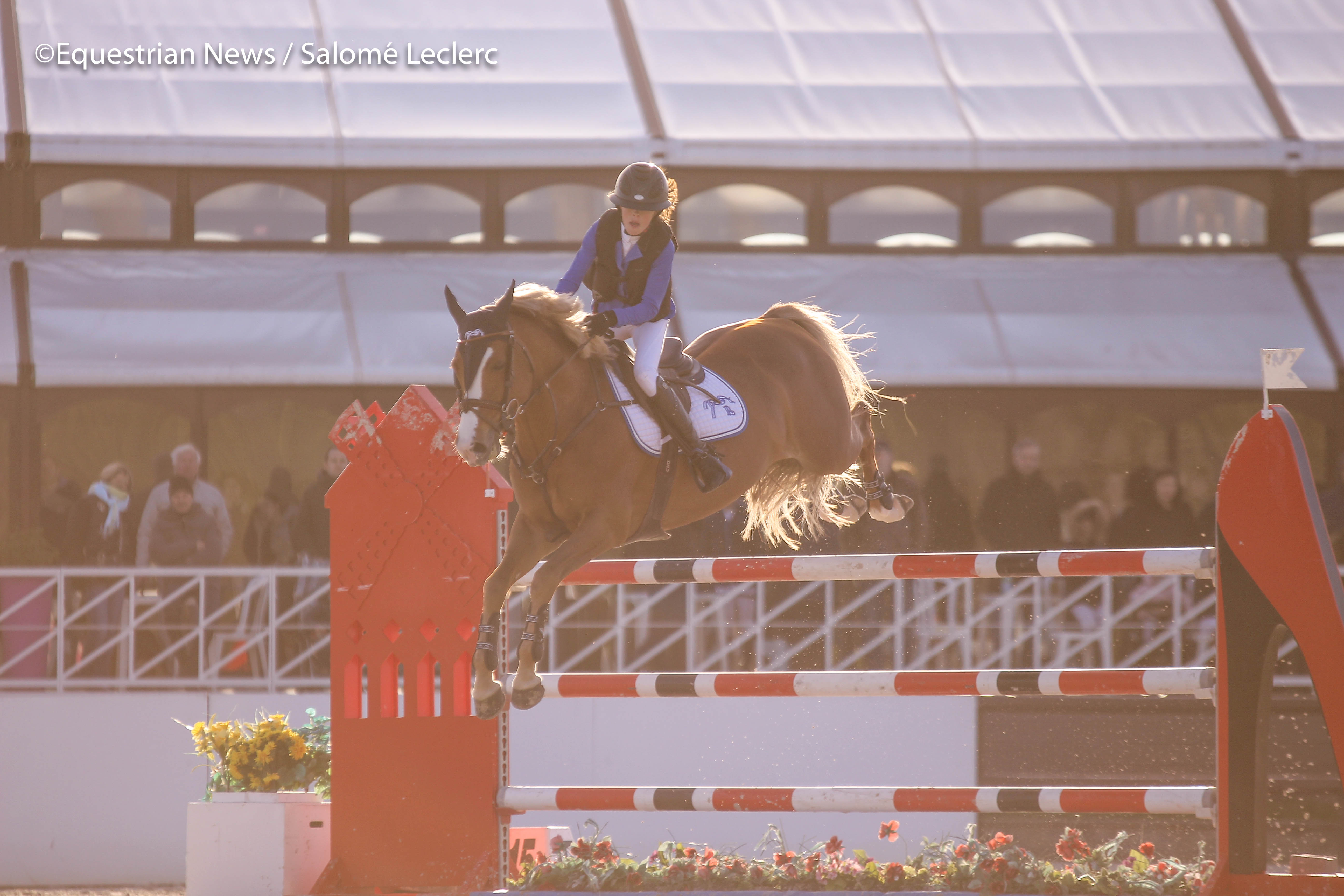 ©Equestrian News Jardy SUPER AS Excellence-4250.jpg